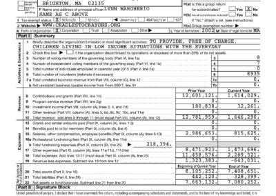 2015 IRS Form 990